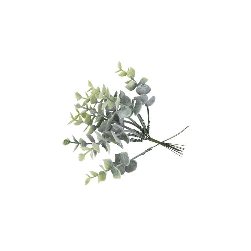 10 Branches d'Eucalyptus